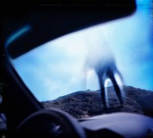 Year Zero (2007)